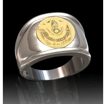 SERVICE DES DOUANES - Argent massif + Insigne OR 9 carats - Autres Corporations
