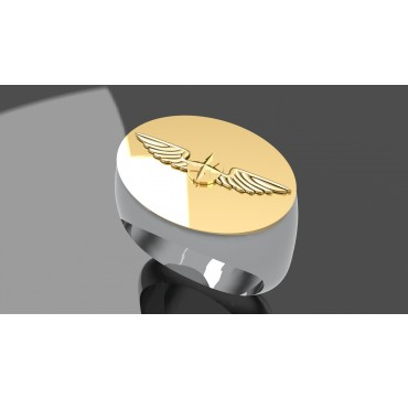BREVET DE PILOTE PRIVE - Argent massif + Insigne  or 9 carats - Autres Corporations