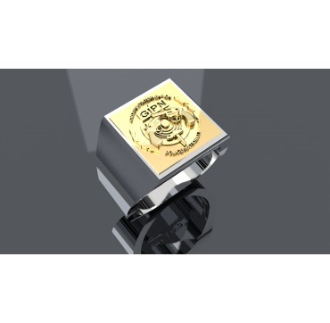 GIPN - Argent massif + Insigne  or 9 carats - Autres Corporations